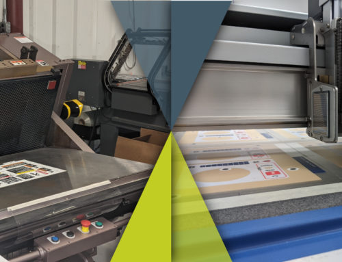 Digital Cutting vs. Die Cutting :: Which to use for your project?